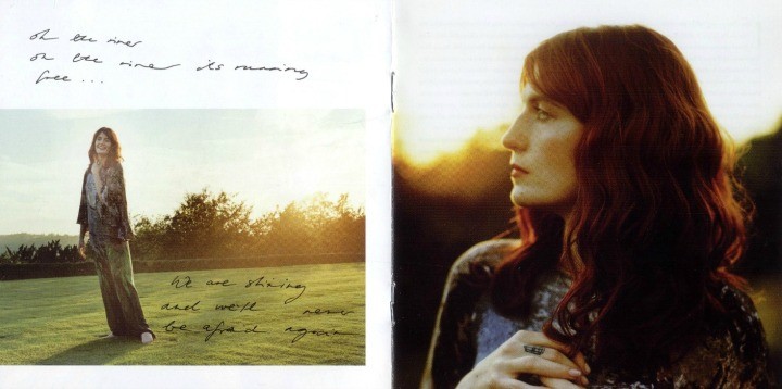 Resultado de imagem para florence and the machine ceremonials